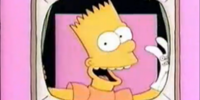 The Bart Simpson Show