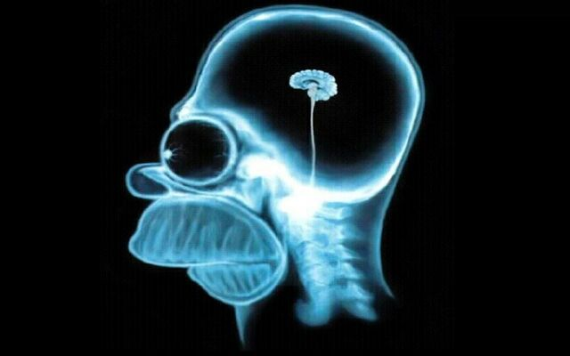 File:Homer-simpson-brain,1280x800,18857.jpg
