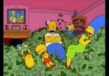 Btl money