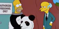 Homer vs. Dignity/Gallery