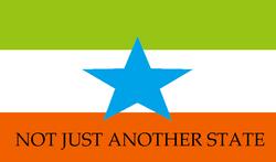 North Takoma flag