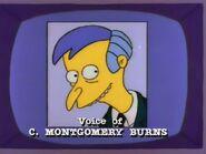 Homer Defined 24