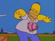 Homerpalooza 53
