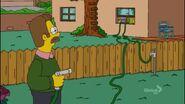 The Bob Next Door (207)