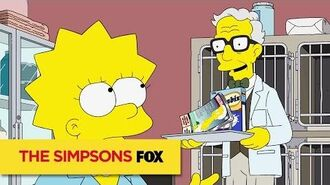 THE SIMPSONS Guest Starring Michael York ANIMATION on FOX