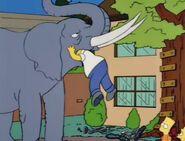 Bart Gets an Elephant 45