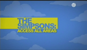 Simpsons - Access All Areas