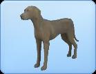 Breed-l71