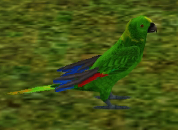 File:Yellow Naped Amazon.png
