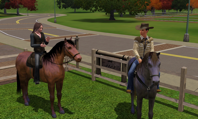 File:Country Cowpokes household.png