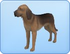 File:Breed-l14.png