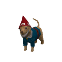 File:Carter Caninenimus Gnome.png