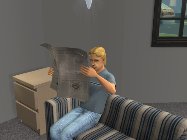 File:Newspapersims2.jpg