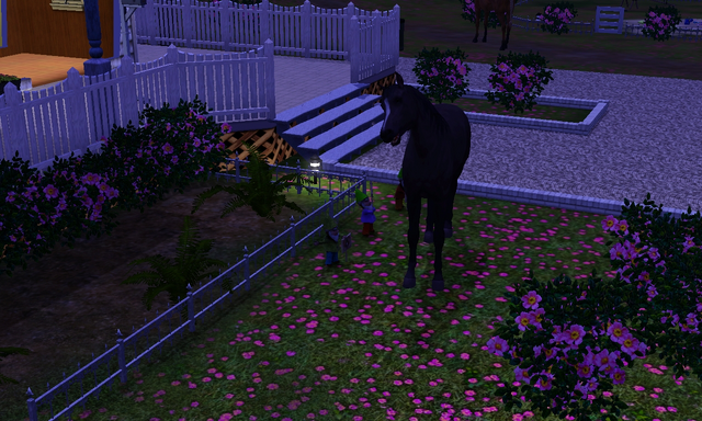 File:Confused horse 2.png