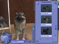 Sims2pets-13