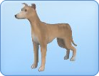 File:Breed-s20.png