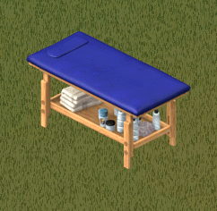 File:Ts1 impruv u pettegrew massage table.png