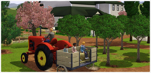 File:Tractor 2.jpg