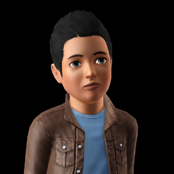Karl Simerburg (The Sims 3)