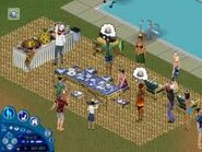 The Sims Party 3