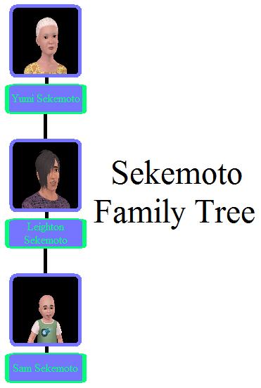 Sekemoto Family Tree