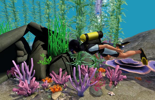 File:Scuba diving island paradise.jpg
