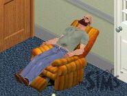 Napping Bob Newbie