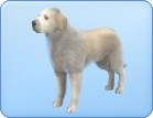 File:Breed-l40.png