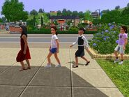 Sim's Tale the four girls