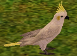 File:Cockatoo.png