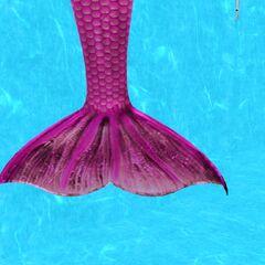 Cola de una Sirena