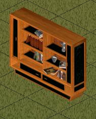 File:Ts1 libri di regina bookcase.png