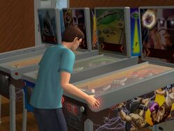Pinball machine-Sims 2