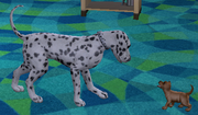 Sims 2 puppy and mother