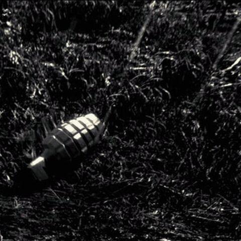 A frag grenade lands next to Dwight.