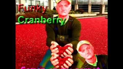 Anal massacre of the funky cranberry - ship