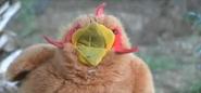 Chickenfinger