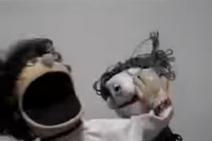 Skippy Shorts Skippy Punches the Creepy Old Lady