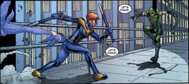 Batgirl Smallville SVNightwing v Arrow
