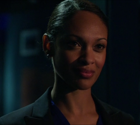 File:Amanda Waller (Arrow) 002.png