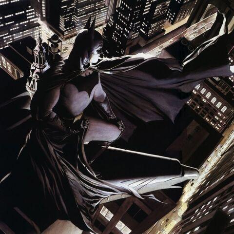 File:Protector of Gotham City.jpg