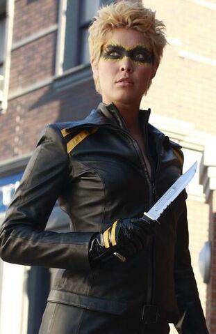 File:Green Arrow Black Canary 3-Maurine.jpg