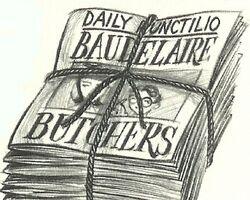 DailyP