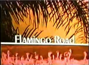Flamingo road-show