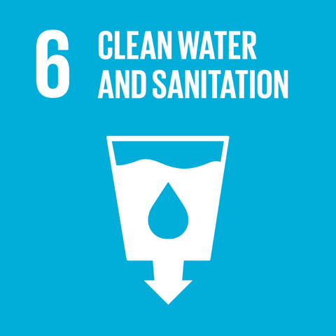 File:E SDG goals icons-individual-rgb-06.png