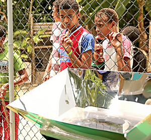 Dominican Republic solar cooking 2016, Yahoo News
