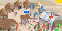 Tamera Solar Village