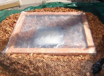 Solar Nest with plastic wrap top