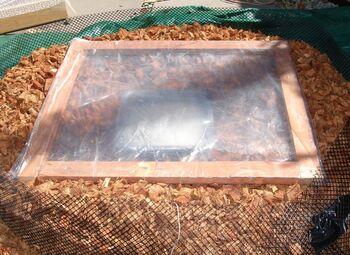 Solar Nest with plastic wrap top