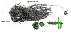 Leviathan art